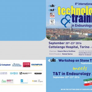 6th International Meeting Tecnology Training in Endourology